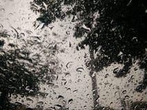 Estação das chuvas Imagens de Stock Royalty Free