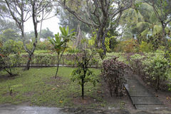A estação das chuvas em Maldivas Foto de Stock