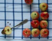 Estação das maçãs Imagens de Stock