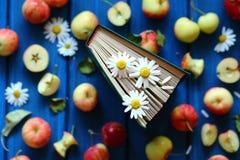 Estação das maçãs Fotografia de Stock
