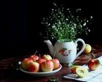 Estação das maçãs Fotos de Stock Royalty Free
