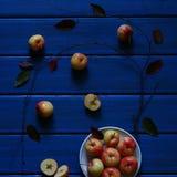 Estação das maçãs Imagem de Stock