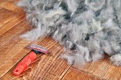 Estação de derramamento da preparação da mola da vertente dos cães do conceito De que derrama a ferramenta - escova dos rakers pa foto de stock