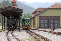 Estação de estrada de ferro com trens Imagens de Stock
