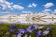 A estação de mola caracteriza a elevação nas montanhas Foto de Stock Royalty Free