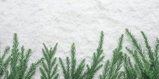 Estação do inverno, ideias dos conceitos do Natal com pinheiro e neve imagens de stock royalty free