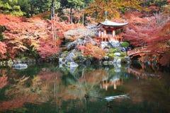 Estação do outono, a cor da mudança da licença do vermelho no templo japão Imagem de Stock