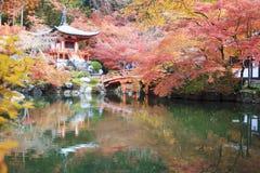 Estação do outono, a cor da mudança da licença do vermelho no templo japão Foto de Stock Royalty Free
