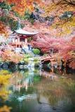 Estação do outono, a cor da mudança da licença do vermelho no templo japão Imagem de Stock Royalty Free