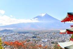 Estação do outono da floresta do bordo em Japão com Mountain View de Fuji Imagem de Stock