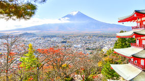 Estação do outono da floresta do bordo em Japão com Mountain View de Fuji Fotos de Stock
