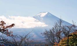 Estação do outono da floresta do bordo em Japão com Mountain View de Fuji Foto de Stock