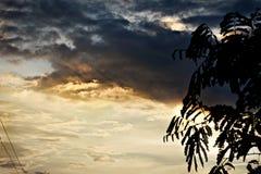 A estação nebulosa com o céu cinzento preto adroable Imagens de Stock Royalty Free