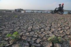 Estação seca em Indonésia fotografia de stock royalty free