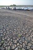 Estação seca em Indonésia fotos de stock royalty free