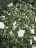 Esta é a foto das folhas cuted do rabanete imagens de stock royalty free