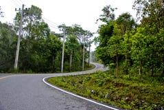 Esta estrada Imagem de Stock Royalty Free