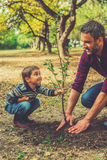 Esta árvore crescerá com você! Imagens de Stock