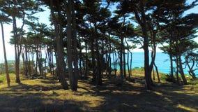 Estabelecendo o tiro da fuga litoral da extremidade do ` s da terra em San Francisco vídeos de arquivo