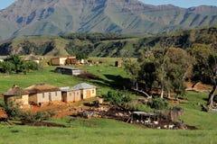 Estabelecimento rural e rebanhos animais fotografia de stock royalty free