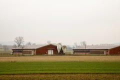 Estabelecimentos agrícolas nos campos fotos de stock royalty free