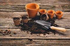 Establecimiento de una planta en conserva en fondo de madera natural en jardín Fotografía de archivo