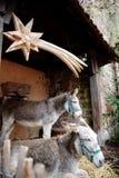 Establo de la Navidad de la estrella de los burros Foto de archivo libre de regalías