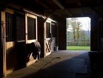 Establo del caballo Imagen de archivo libre de regalías