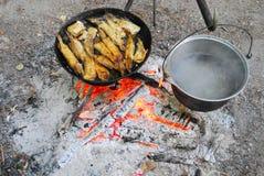 A estaca é peixe fritado em uma frigideira e em algum potenciômetro caloroso Imagem de Stock Royalty Free