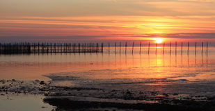 Estacas de la puesta del sol y de la pesca Imagen de archivo