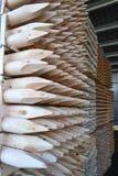 Estacas do Sharp na madeira serrada conservada em estoque Foto de Stock Royalty Free