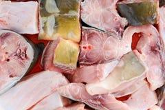 Estacas dos peixes na placa pronta para ser coberto nos pães ralados e no bak Fotografia de Stock Royalty Free