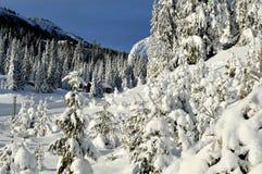 Estación de esquí de Kvitfjell, Noruega Fotos de archivo