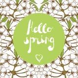 Estación de primavera que da la bienvenida, saludos de la estación Imagenes de archivo
