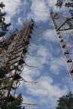 Estación de radio de la ubicación y x22; Duga& x22; , Zona de Chornobyl Fotografía de archivo