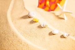 Estación de verano, foco selectivo en conchas marinas con las estrellas de mar y balanceo manchado del sandalia o manchado en fon Imágenes de archivo libres de regalías