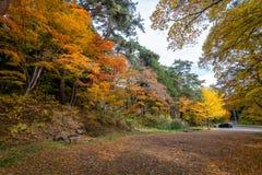 Estación del color del otoño alrededor de Josen-ji Imagen de archivo libre de regalías