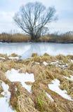 Estación del invierno Foto de archivo libre de regalías