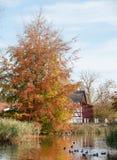Estación del otoño Imagen de archivo libre de regalías