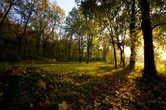 Estación del otoño en campaña fotos de archivo libres de regalías