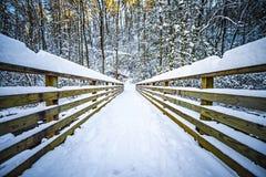 Estación del sur del invierno del parque de estado de la montaña Fotos de archivo libres de regalías