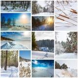 Estación-invierno del collage La naturaleza de Siberia occidental imagen de archivo