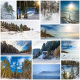 Estación-invierno del collage La naturaleza de Siberia occidental fotos de archivo