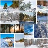 Estación-invierno del collage La naturaleza de Siberia occidental imagen de archivo libre de regalías