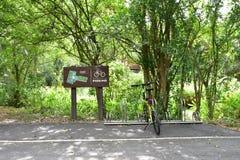 Estacionamiento de la bici en el parque de Krachao de la explosión Imágenes de archivo libres de regalías