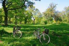 Estacionamiento de la bicicleta fotografía de archivo
