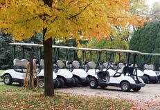 Estacionamiento del carro de golf Fotografía de archivo