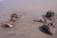 Estacionamiento prohibido en la playa Imagen de archivo libre de regalías