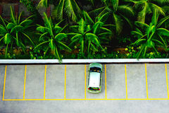 Estacionamiento tropical Foto de archivo