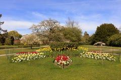 Estacione a cena com camas de flor e as árvores de florescência Foto de Stock